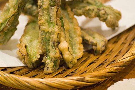 森の賢者四角豆