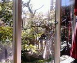 コンマ庭景