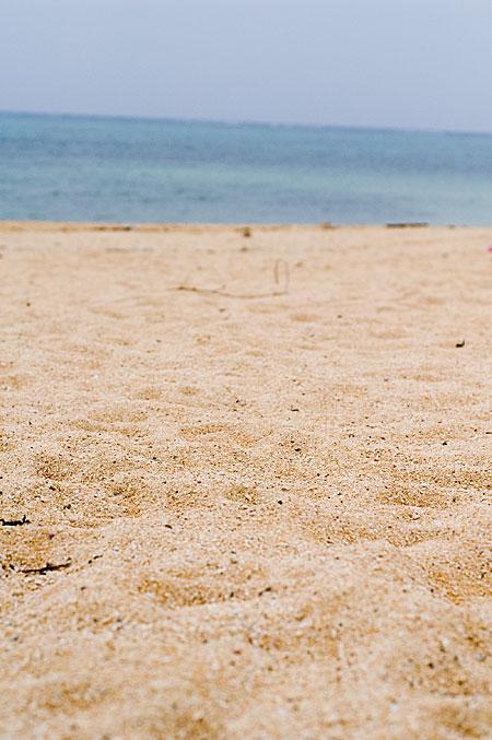 琉球の色 2日目の石垣島 北部エリアの魅力