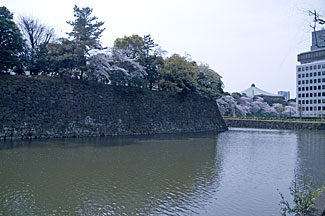 武道館へS修正