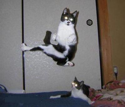 おいしそうな脚の女子高生199脚目 [転載禁止]©bbspink.com->画像>4249枚