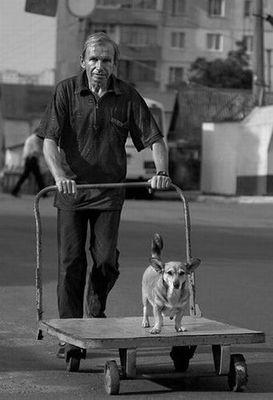 犬と離れられない人々05