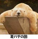 暑ちぃ・・