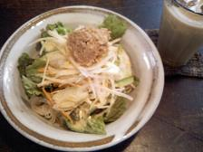 冷やし肉サラダ麺