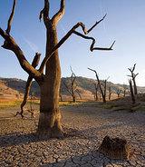 豪州の旱魃