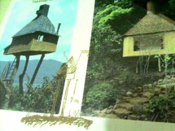 藤森建築と路上観察