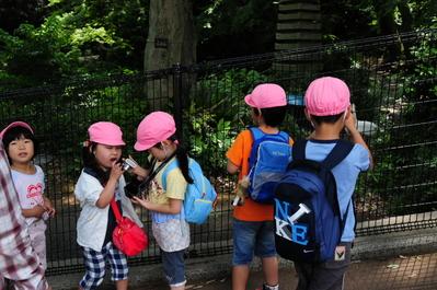 幼稚園児とデジカメ