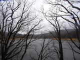 八幡大沼湖