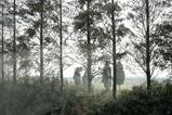 豫園 その2