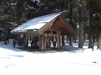 雪の北海道神宮