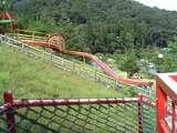 白崎公園5