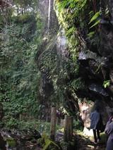 裏見ヶ滝側面