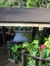 温泉入り口