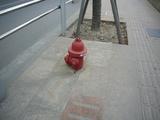 埋もれた消火栓.jpg