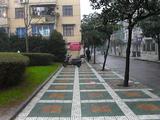 中国上海 歩道が?.jpg