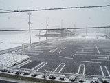 060121雪.jpg