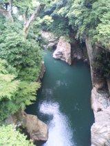 saruhashi06