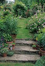 ガーデンライフ