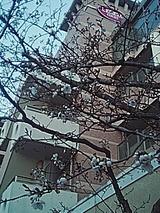 050404_1820~01.jpg