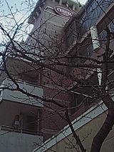 050326_1049~01.jpg