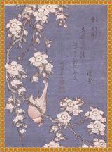 葛飾北斎 鶯垂桜図 原画