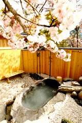 奥飛騨温泉・お宿のざわの貸切露天風呂