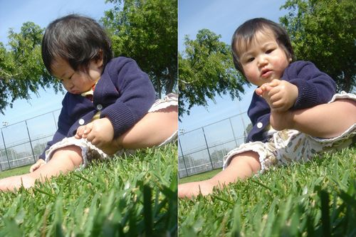 may on the grass