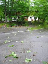 f6501366.jpg