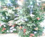 緑のツリー