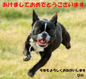 http://image.blog.livedoor.jp/pino0619/imgs/6/a/6ae244ed.jpg