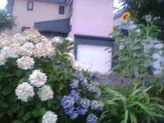 http://image.blog.livedoor.jp/qoozy/imgs/f/4/f49e931e.jpg