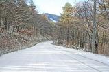 美し松道路