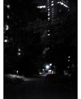 聖路加遊歩道