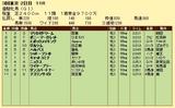 第6S:5月4週 優駿牝馬 競争成績