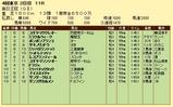第14S:10月2週 毎日王冠 成績