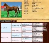 現役馬@ベラミーケイ 血統表