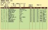 第13S:10月3週 府中牝馬S 成績