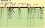 第9S:03月5週 ドバイワールドカップ 競争成績