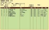第13S:11月3週 京王杯2歳S 成績