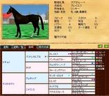 繁殖牝馬@グアダルーペ 血統表