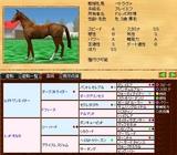 繁殖牝馬@ペトラヴァ 血統表