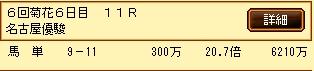 第5S:6月2週 名古屋優駿 的中馬券