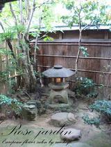 金澤 杉の井