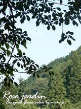 岐阜県 長良川