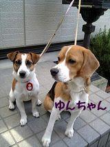 2005-4-17-yun