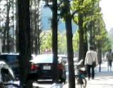日比谷公園行く途中パトカー