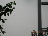 秋葉原2006.7.27.15.23