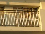 窓シートはがれてる