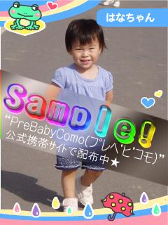 6A-blog_Sample