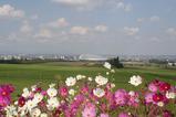 札幌羊が丘